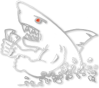 Shark player